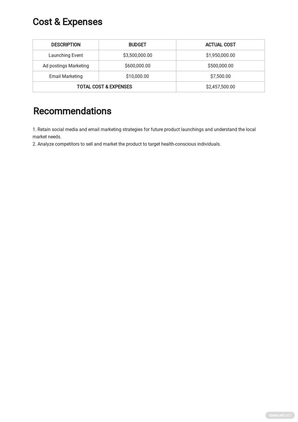 Sample Marketing Report Template 2.jpe