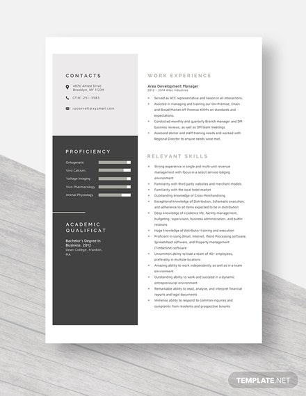 Area Development Manager Resume Template