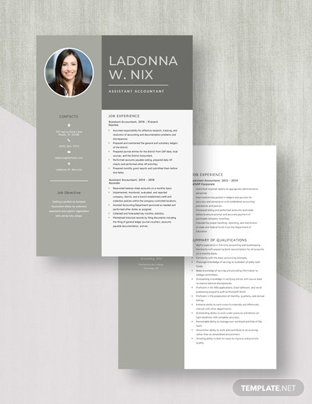 Assistant Accountant Resume Download