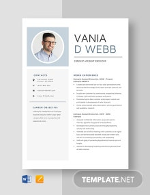 Comcast Account Executive Resume Template