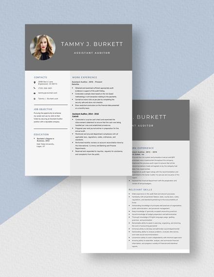 Assistant Auditor Resume Download
