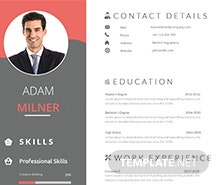 Free BPO Career Resume Template