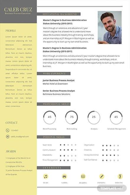 Free Business Process Executive Resume Template