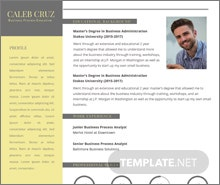 free business process executive resume template - Social Media Specialist Resume