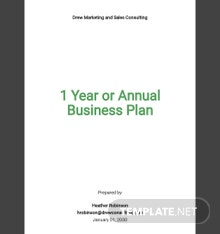 1 Year or Annual Business Plan Template