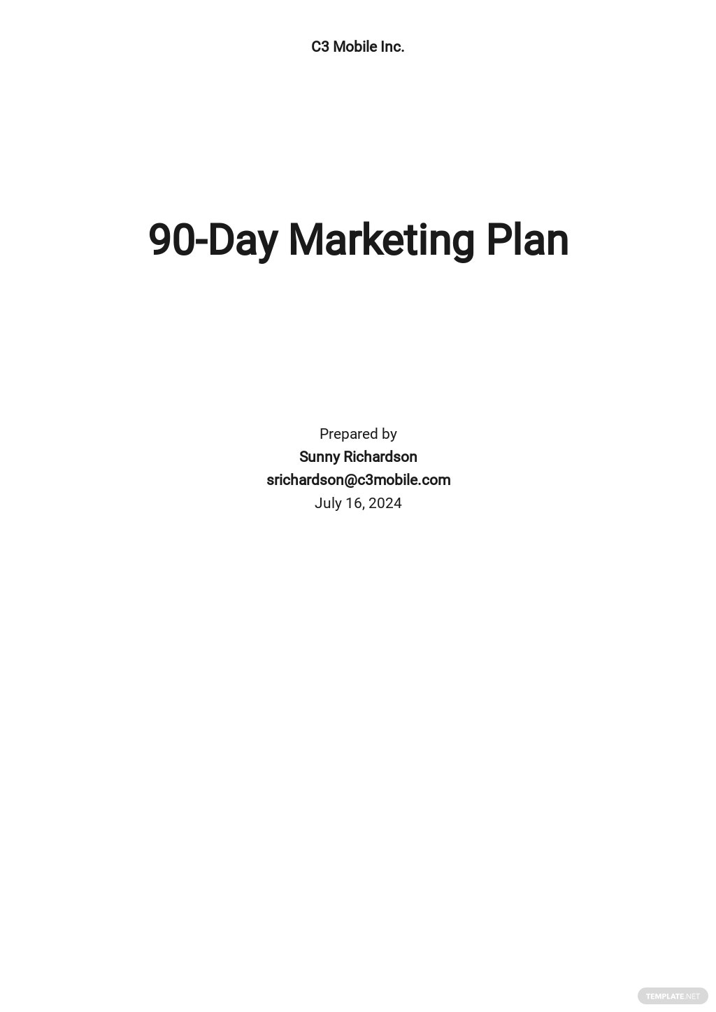 90 Day Marketing Plan Template