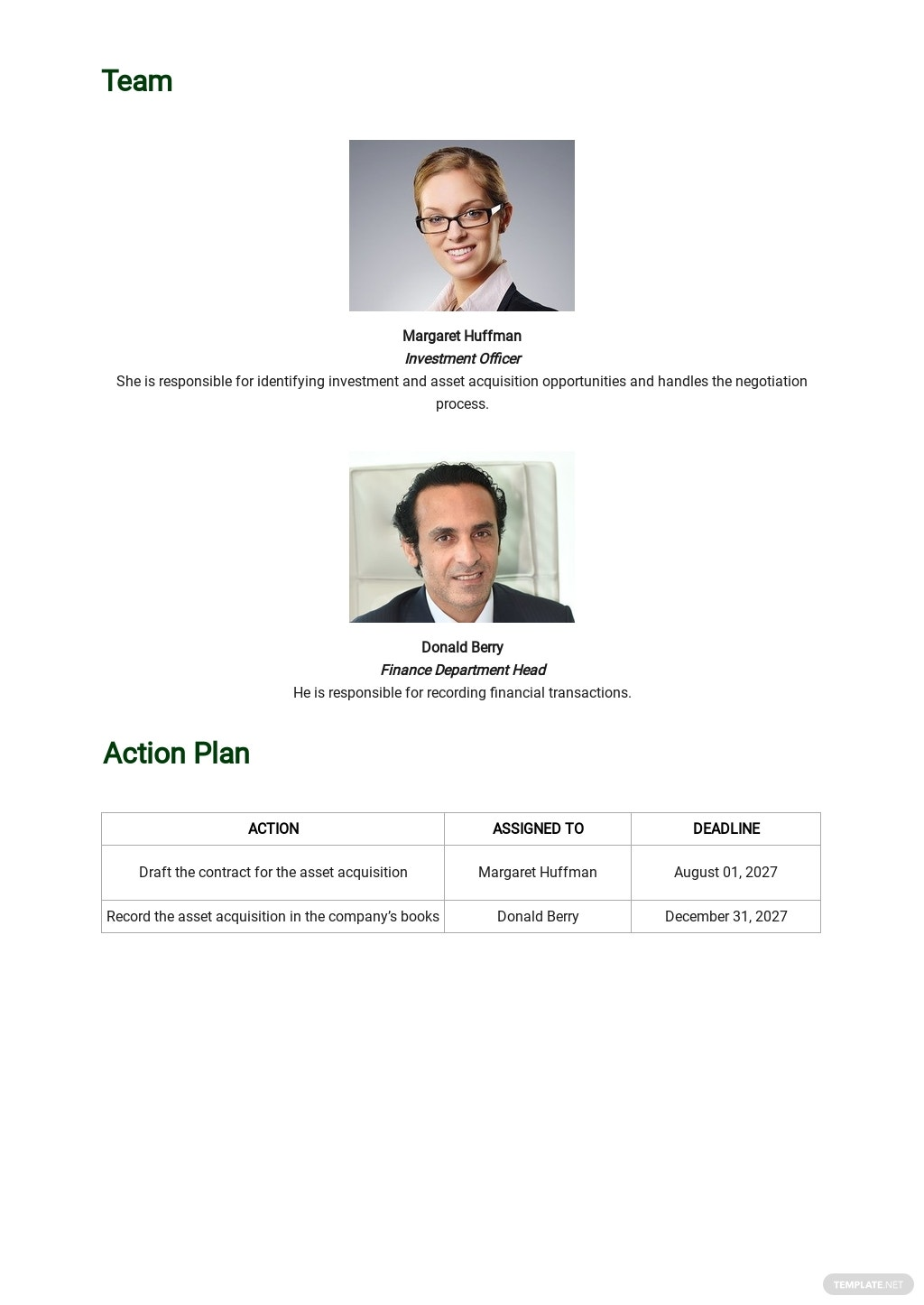 Acquisition Strategy Plan Template 3.jpe