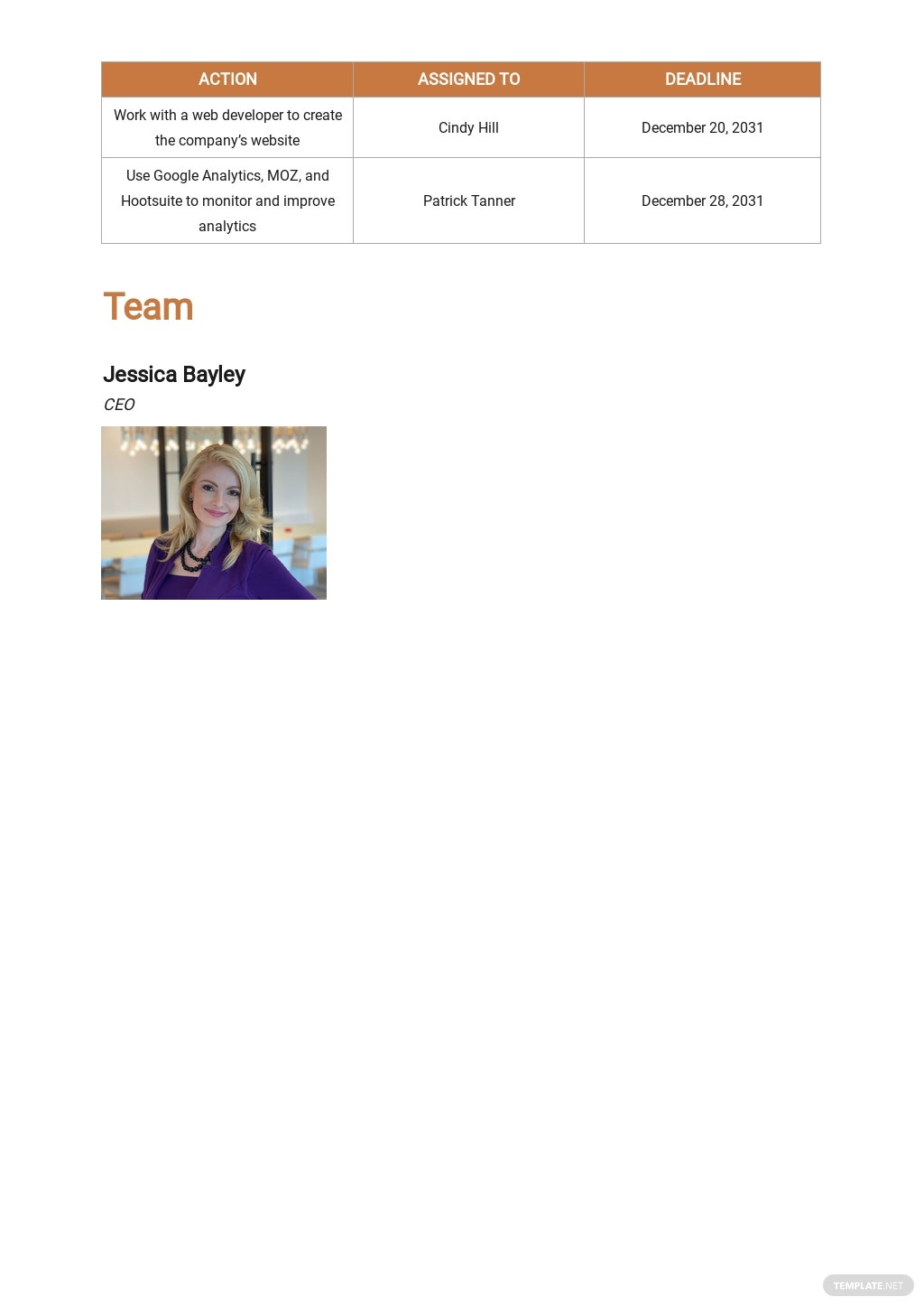 Advertising Consulting Business Plan Template 5.jpe