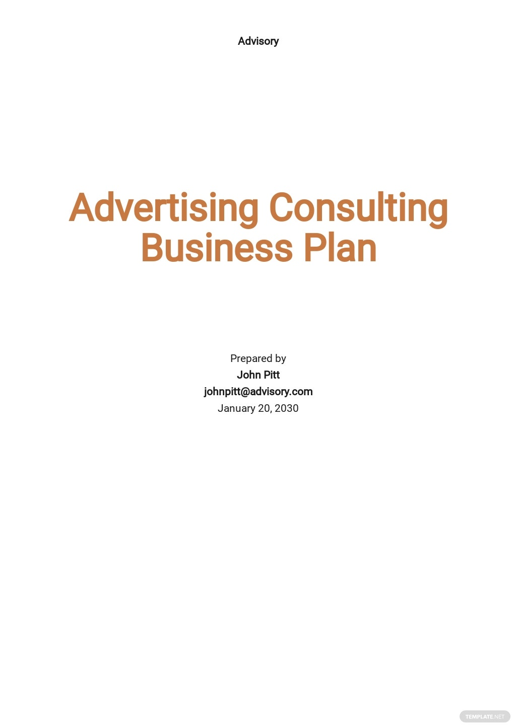 Advertising Consulting Business Plan Template