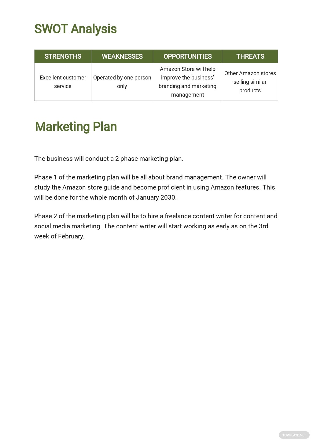 Amazon Store Business Plan Template 3.jpe