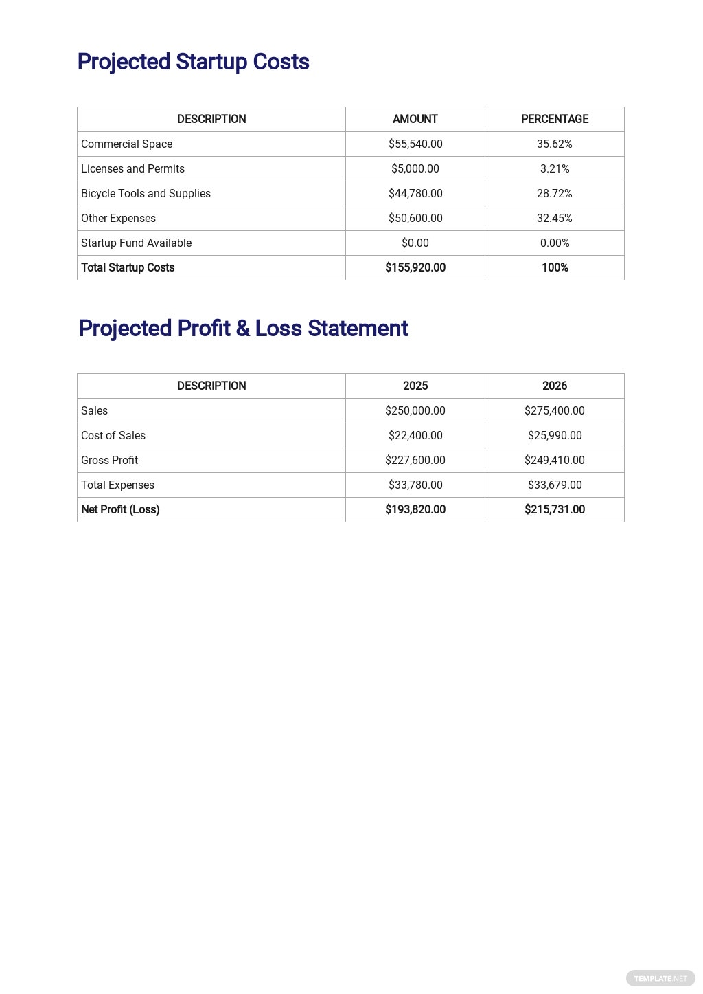 Bicycle Rental Business Plan Template [Free PDF] - Google Docs, Word