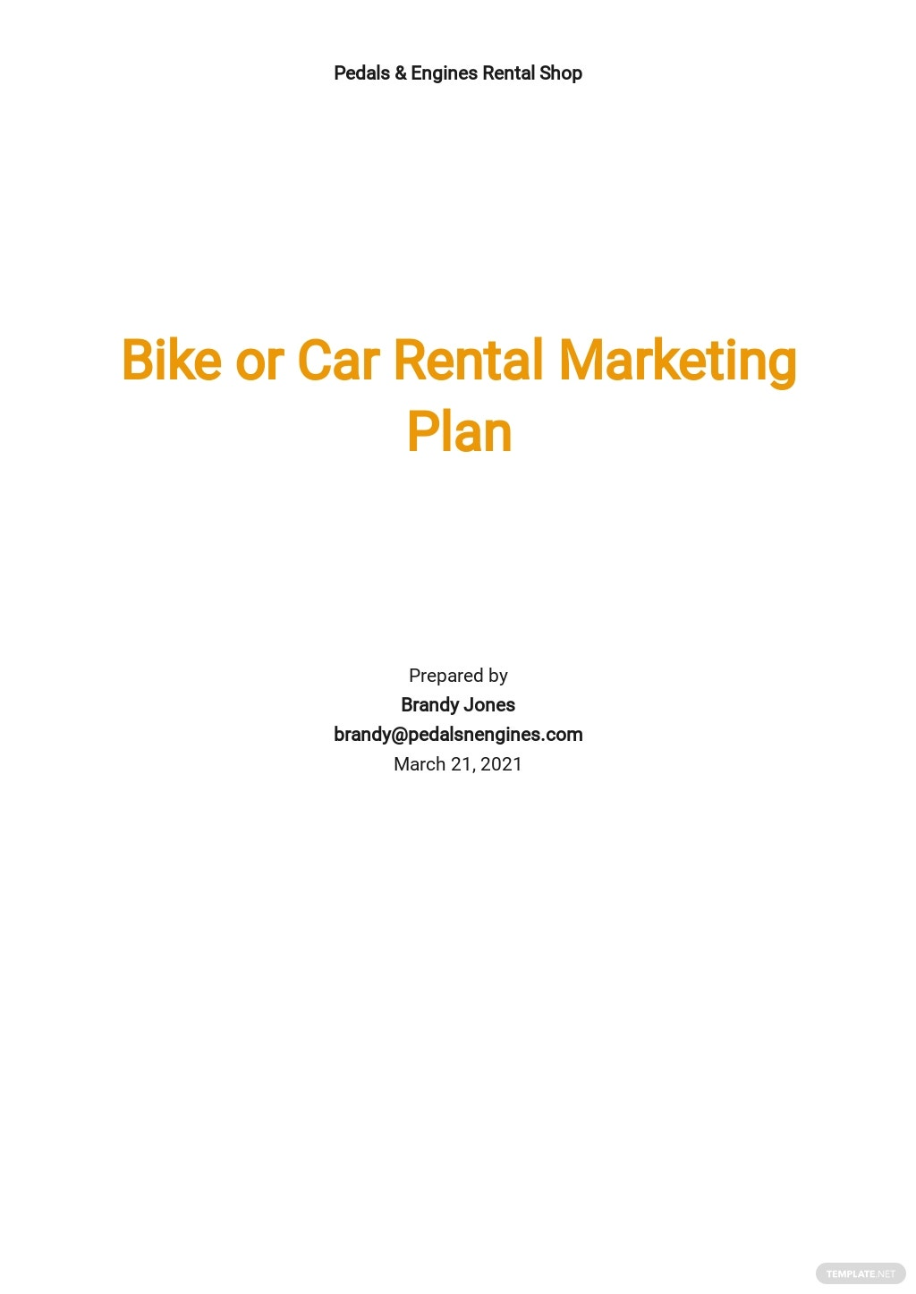 Bike or Car Rental Marketing Plan Template