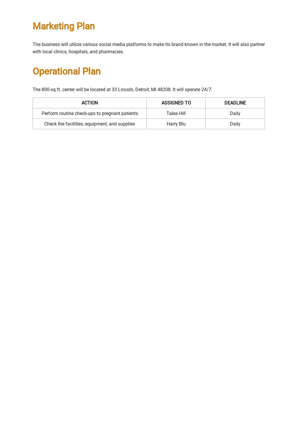 Birth Center Business Plan Template 3.jpe