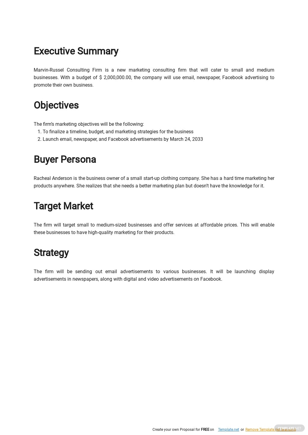 Business Consultant Marketing Plan Template 1.jpe