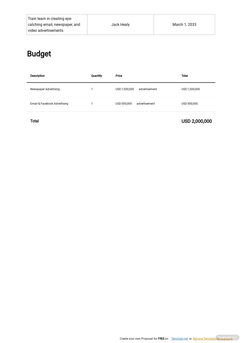 Business Consultant Marketing Plan Template 3.jpe