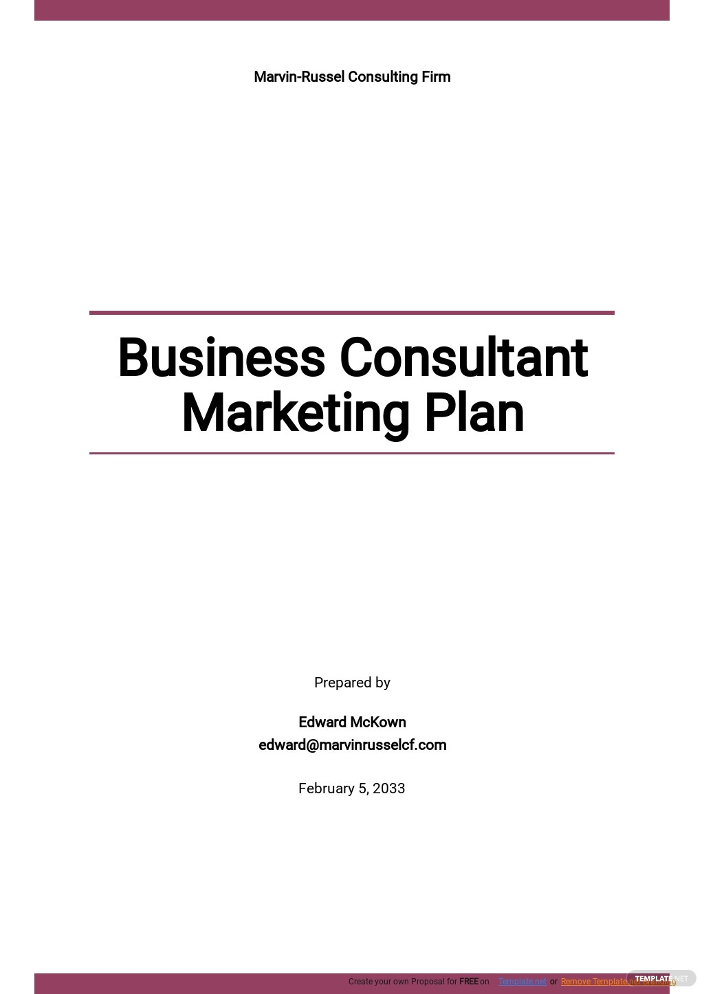 Business Consultant Marketing Plan Template.jpe