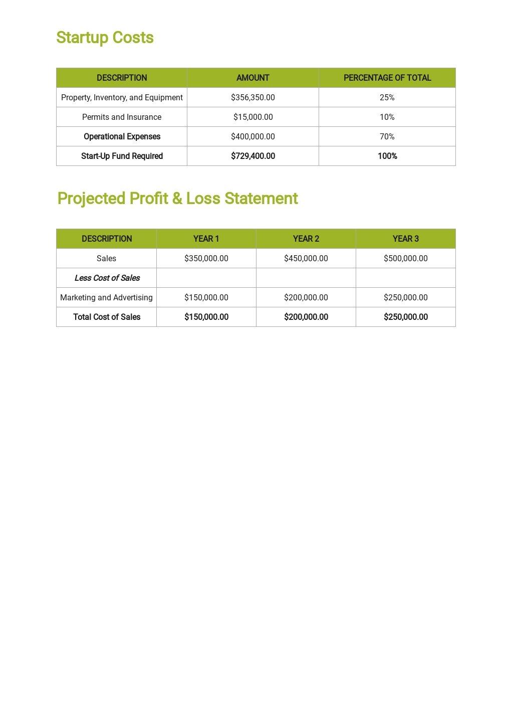 Car Rental Business Plan Template 6.jpe