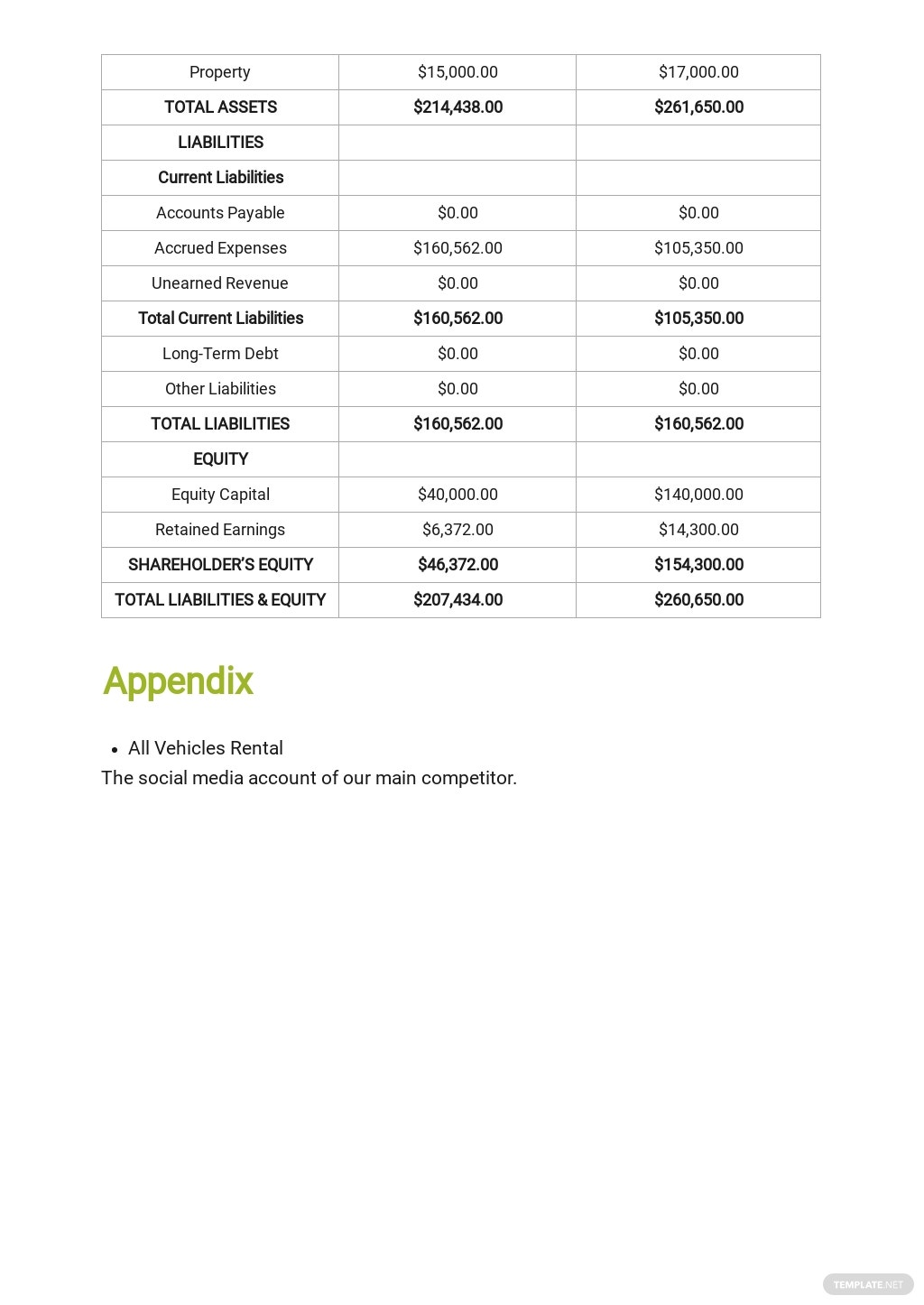 Car Rental Business Plan Template 8.jpe