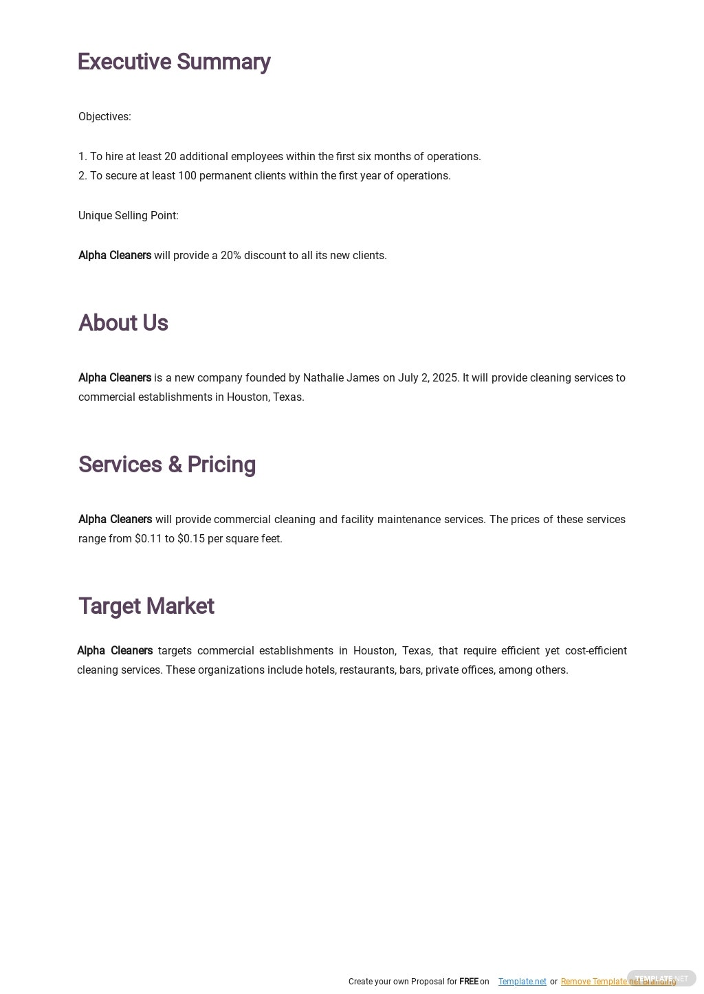 Cleaning Service Business Plan Template 1.jpe