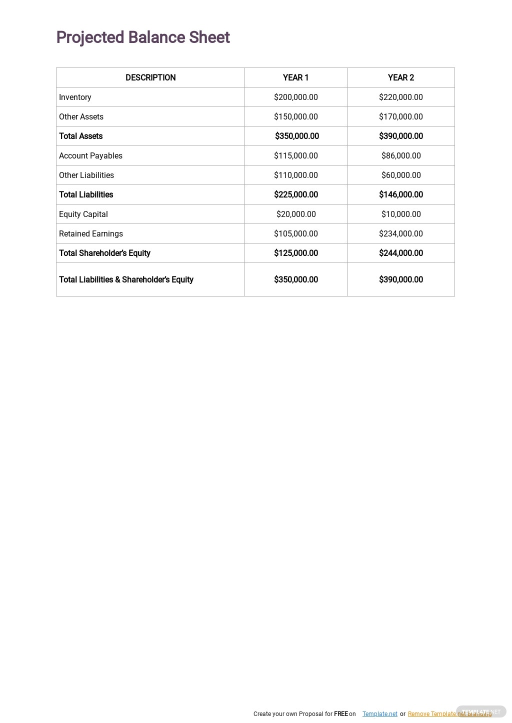 Cleaning Service Business Plan Template 7.jpe