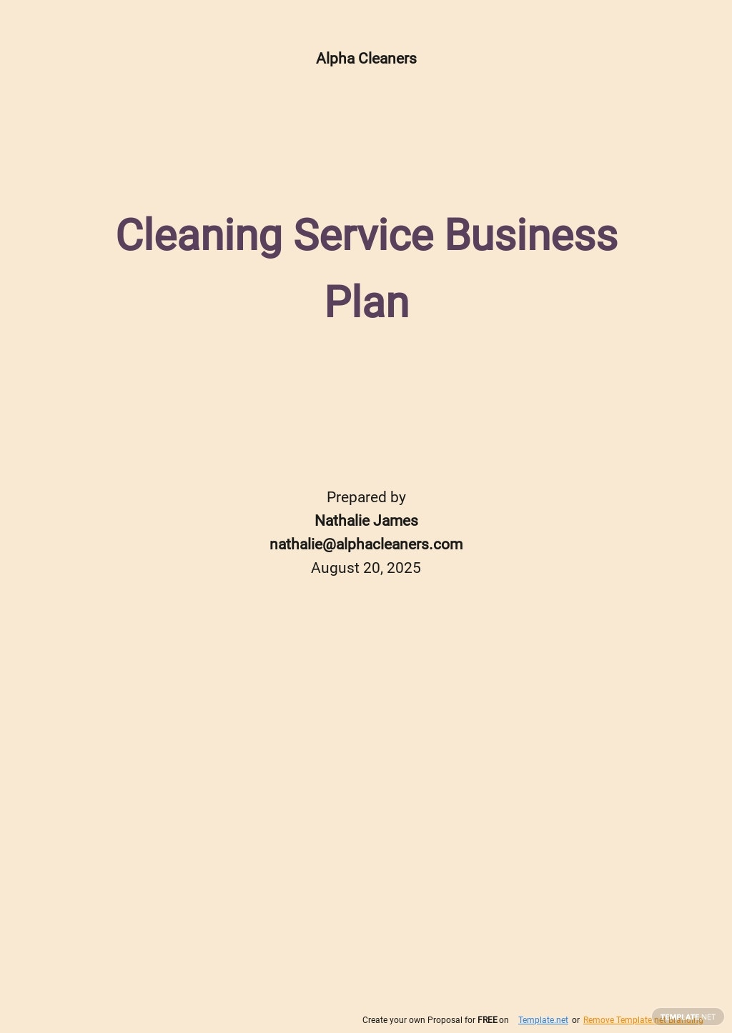Cleaning Service Business Plan Template.jpe