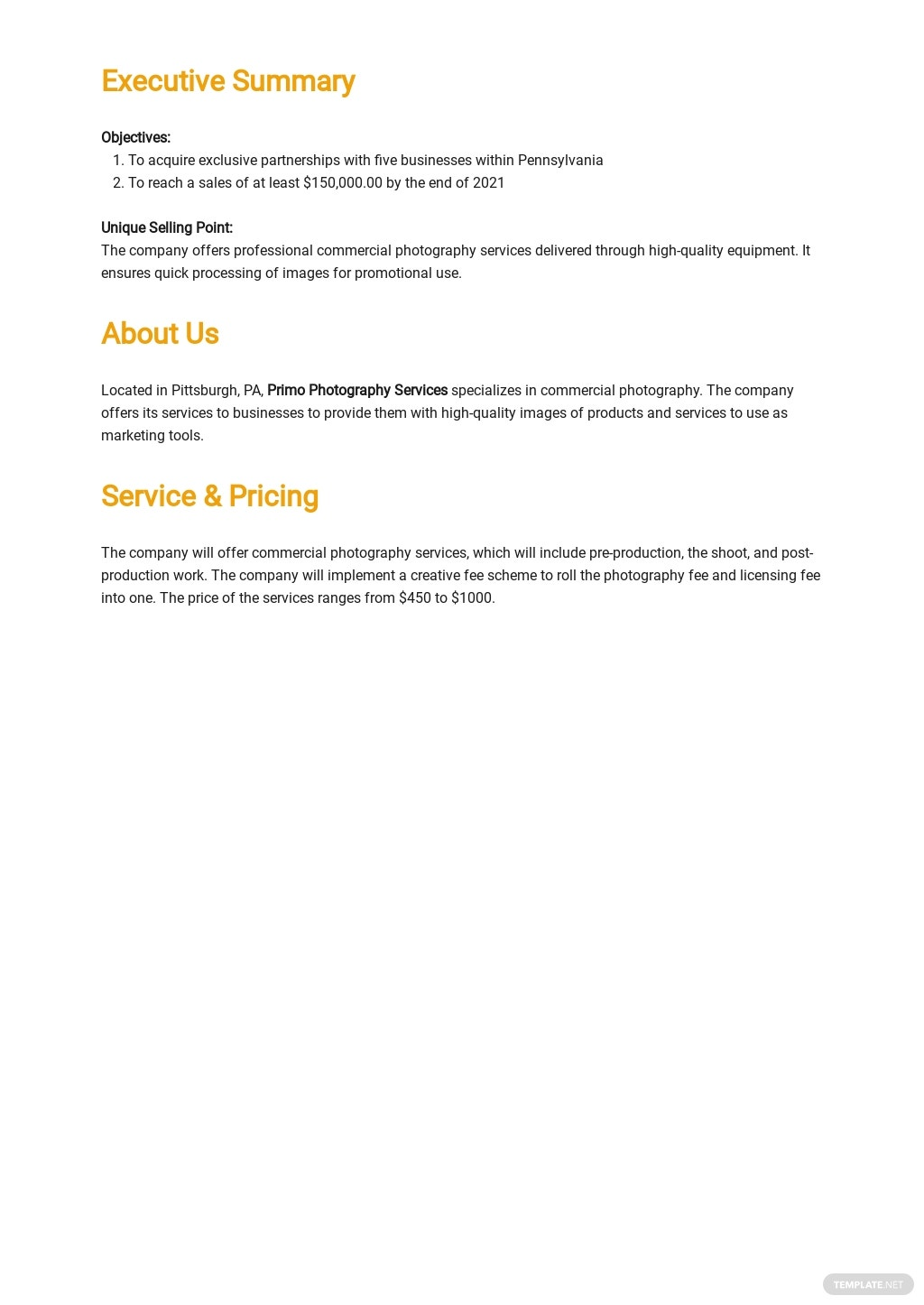 Sample Commercial Photography Business Plan Template 1.jpe