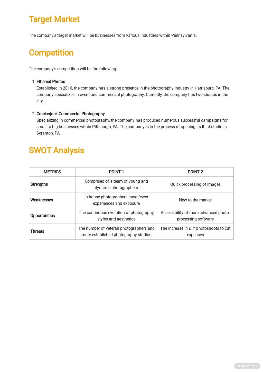 Sample Commercial Photography Business Plan Template 2.jpe