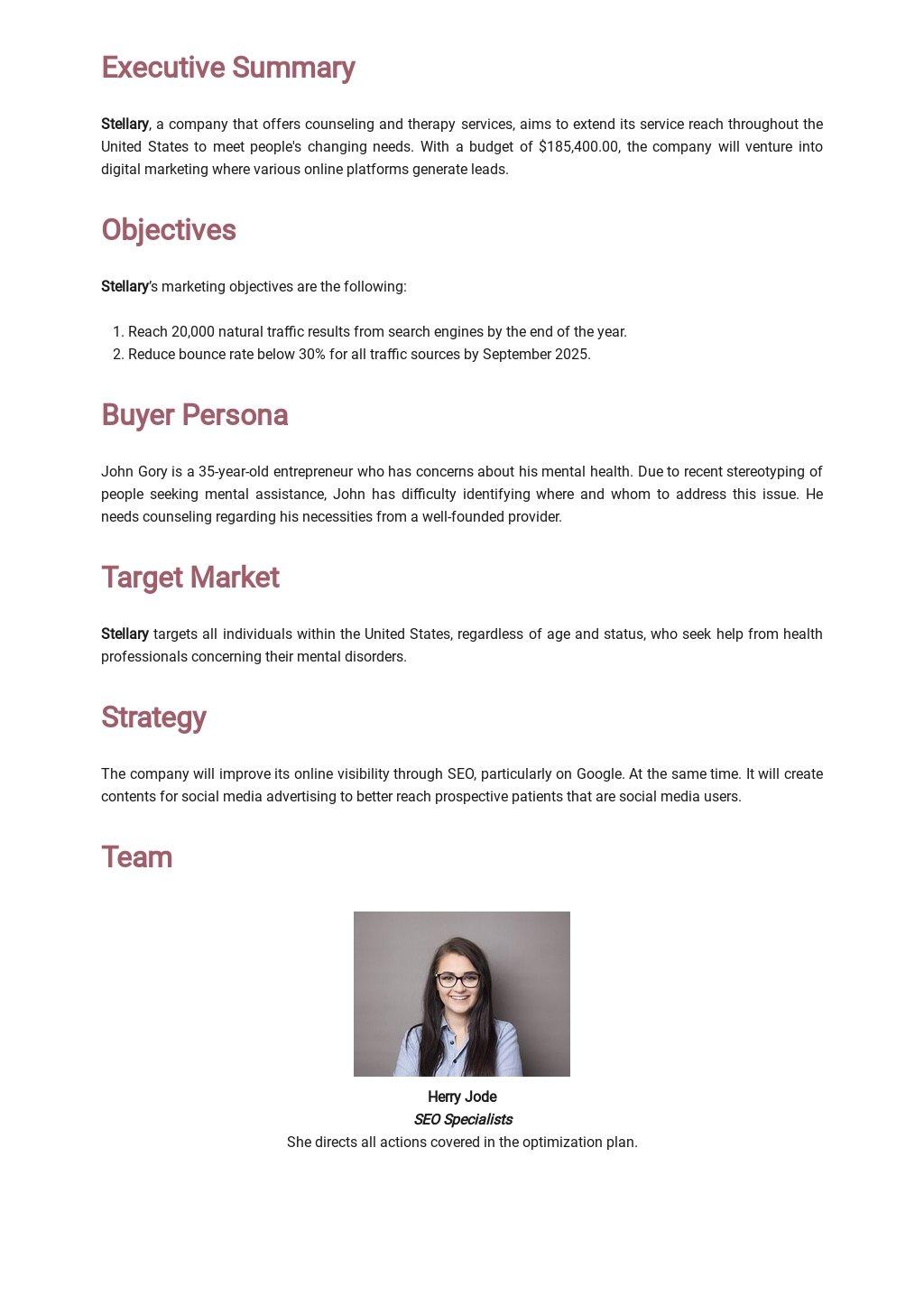 Digital Marketing Strategy Plan Template 1.jpe
