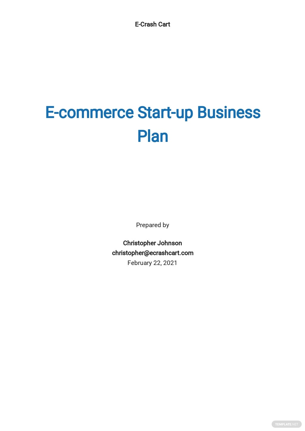 E-commerce Start-up Business Plan Template