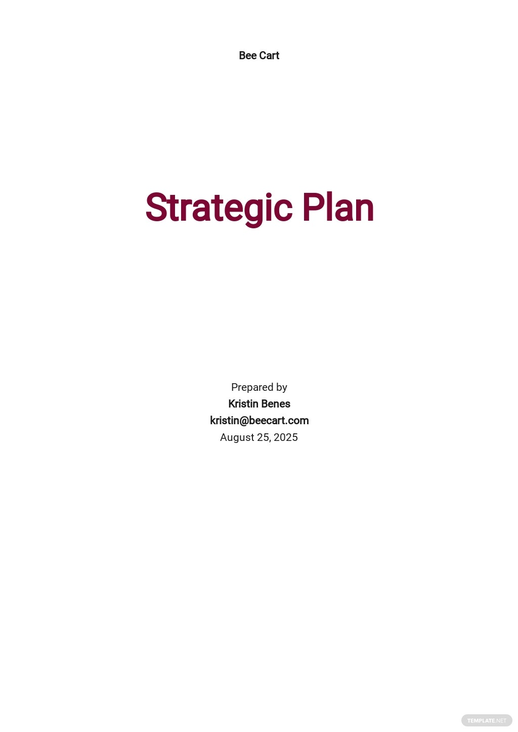 E-Commerce Strategy Plan Template