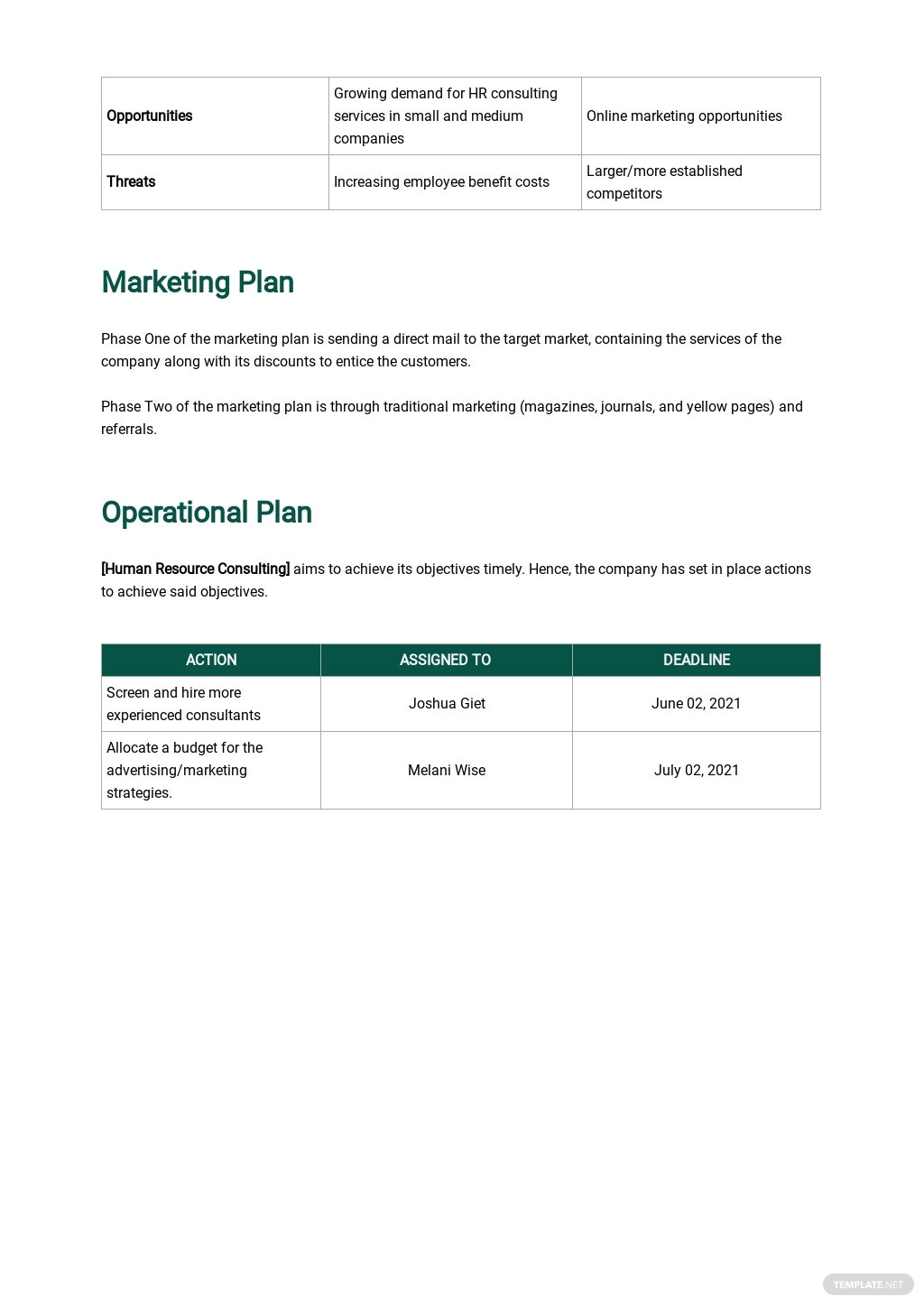 HR Consulting Business Plan Template 3.jpe