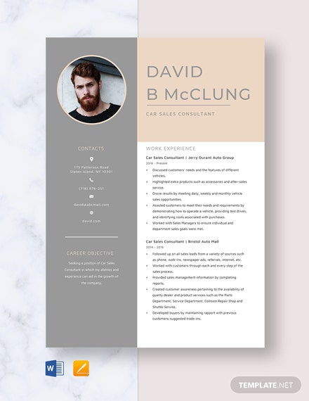 Car Sales Consultant Resume Template