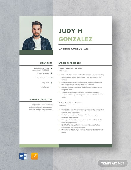 car sales consultant resume template  download 1154