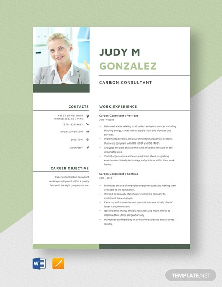 Carbon Consultant Resume Template