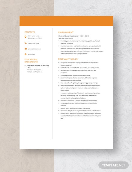 Clinical Nurse Practitioner Resume Template