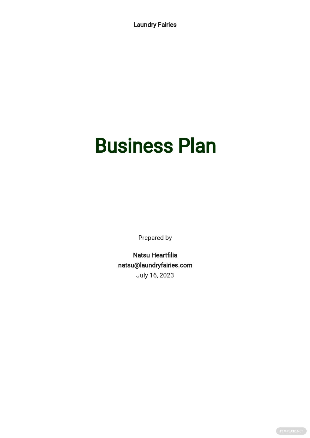 Laundry Business Plan Template