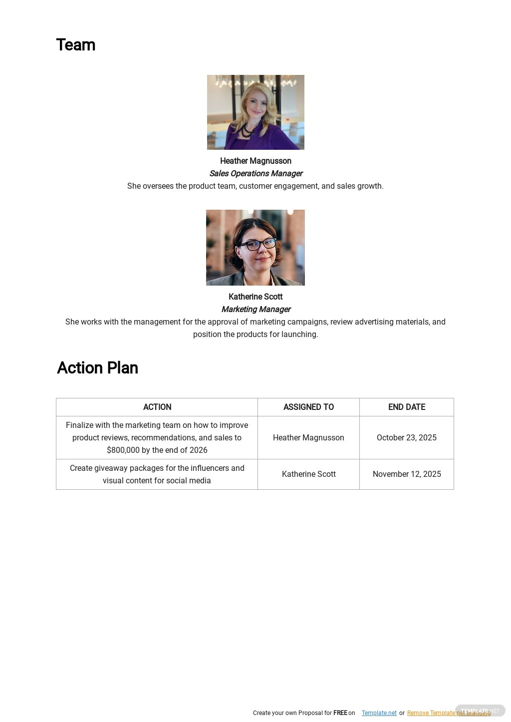 Market Entry or Product Launch Strategy Plan Template 2.jpe