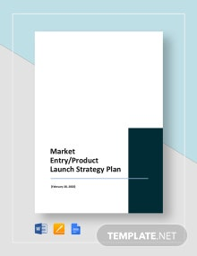 Market Entry or Product Launch Strategy Plan Template
