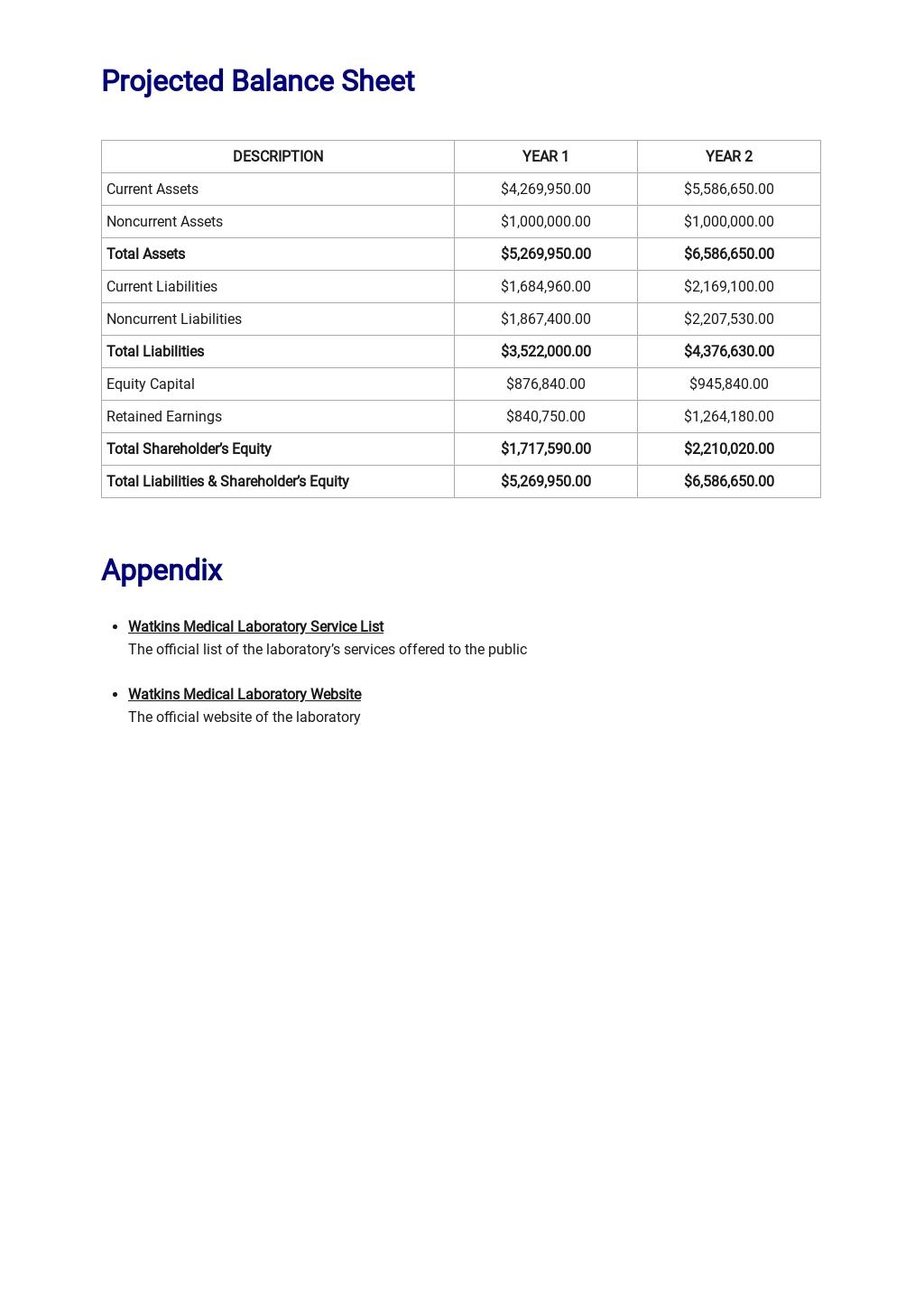Medical Laboratory Business Plan Template 6.jpe