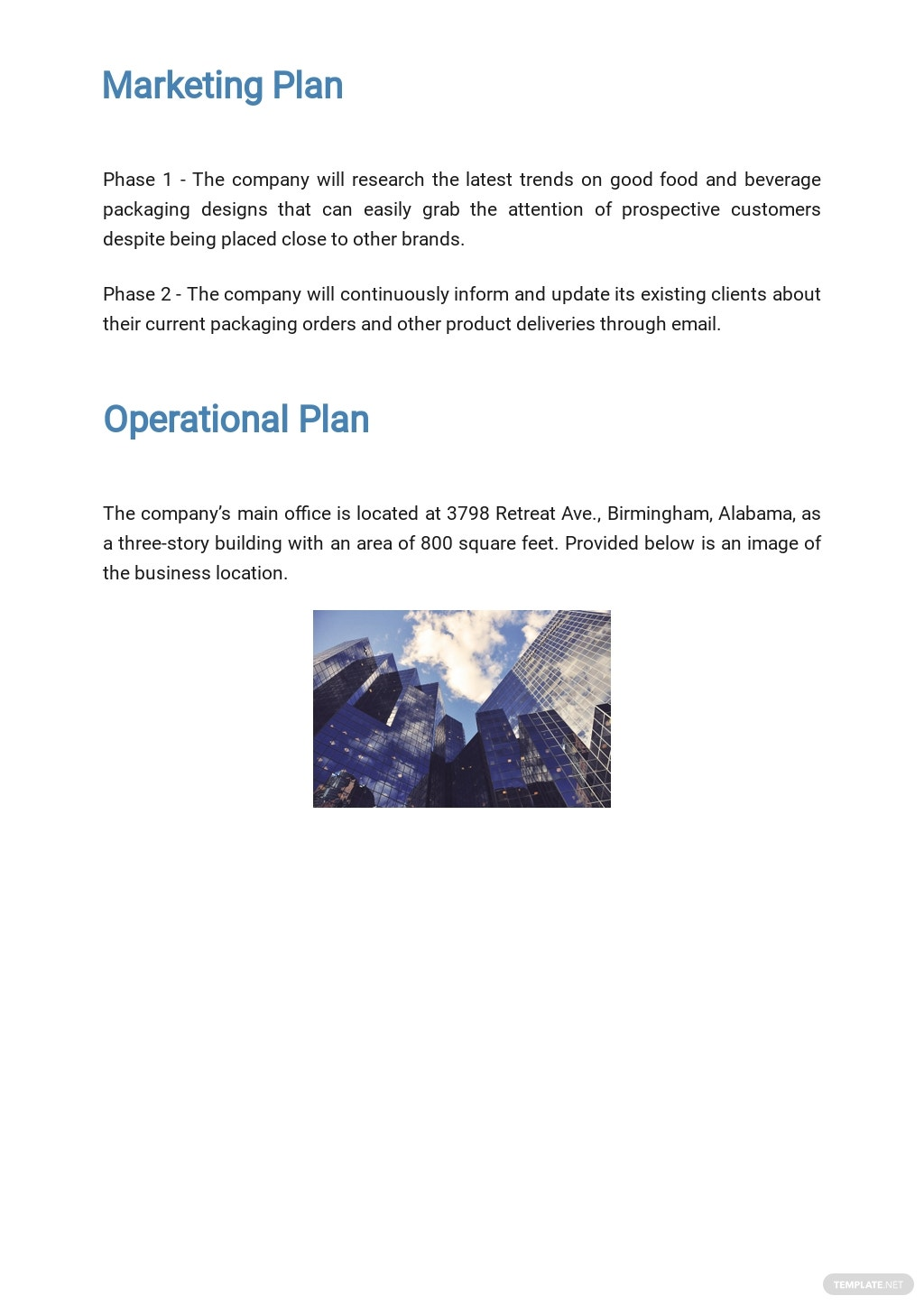 Packaging and Shipping Business Plan Template 4.jpe