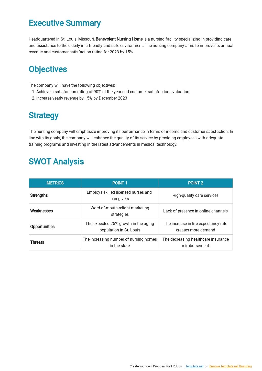 Nursing Company Strategic Plan Template 1.jpe