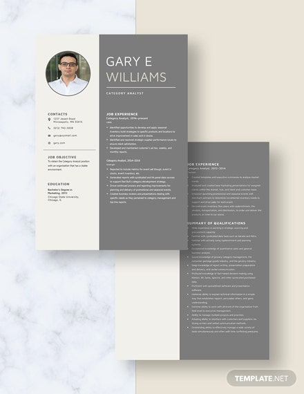 Category Analyst Resume Download