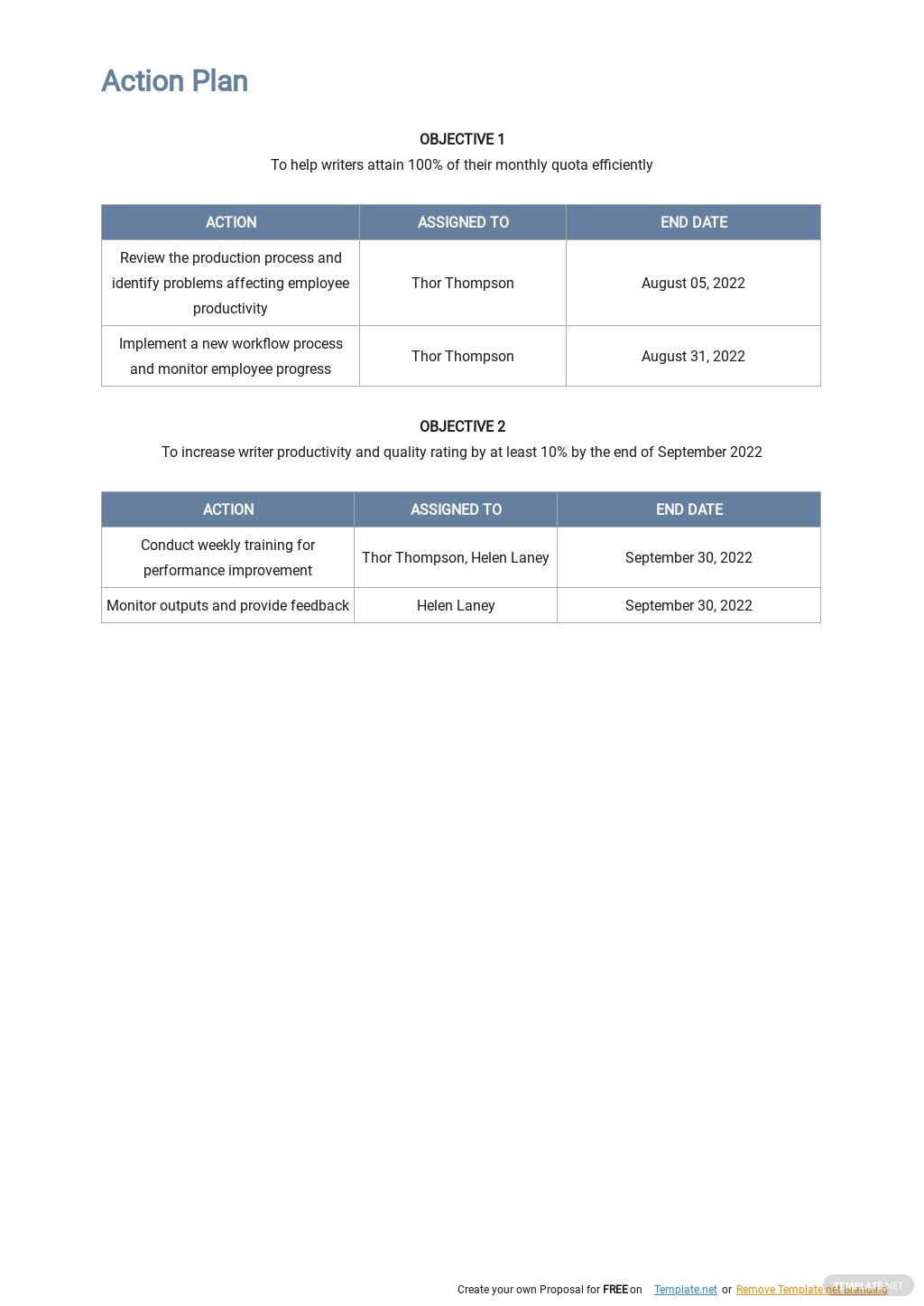 Performance Action Plan Template 2.jpe