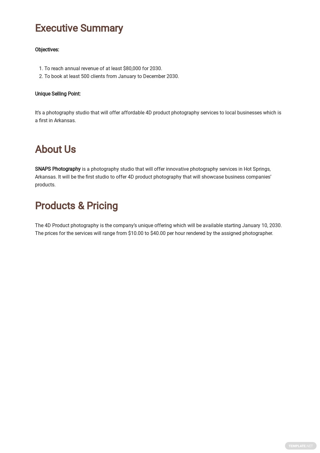 Photography Studio Business Plan Template 1.jpe