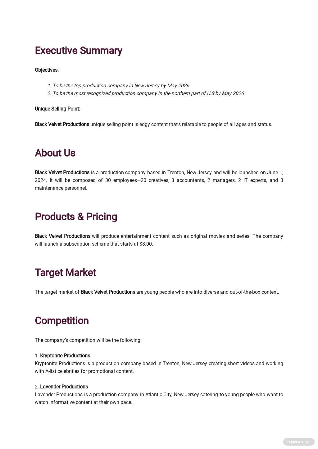Production Company Business Plan Template 1.jpe