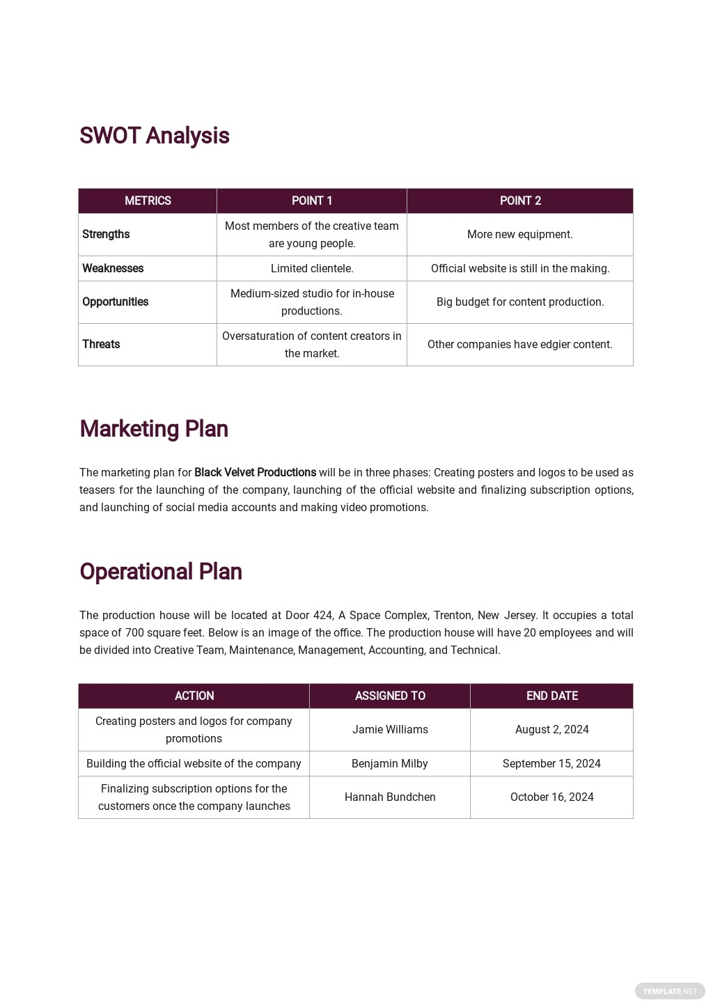 Production Company Business Plan Template 2.jpe