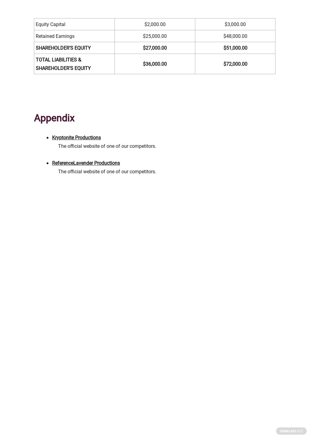 Production Company Business Plan Template 7.jpe