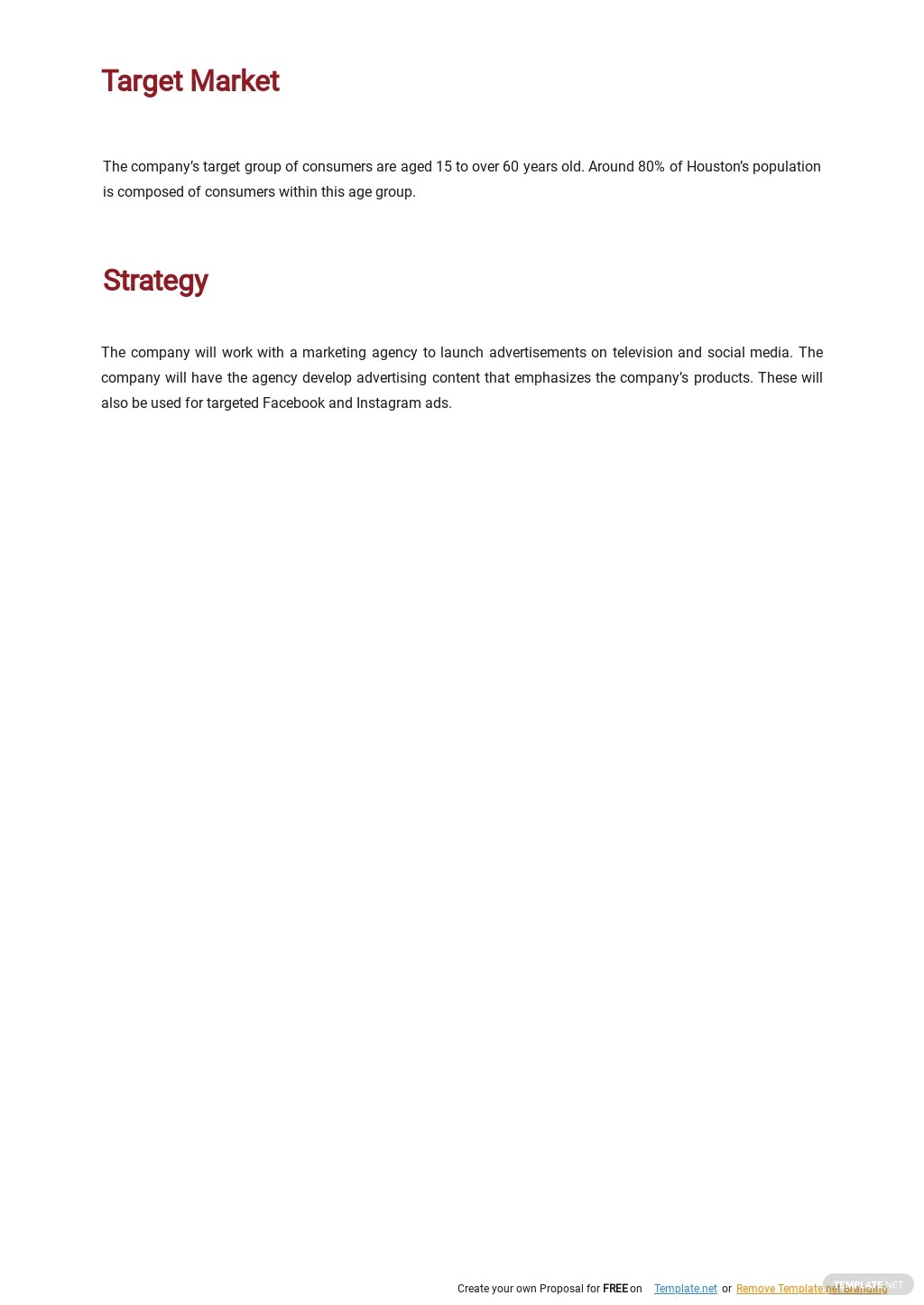 Retail Marketing Plan Template 2.jpe