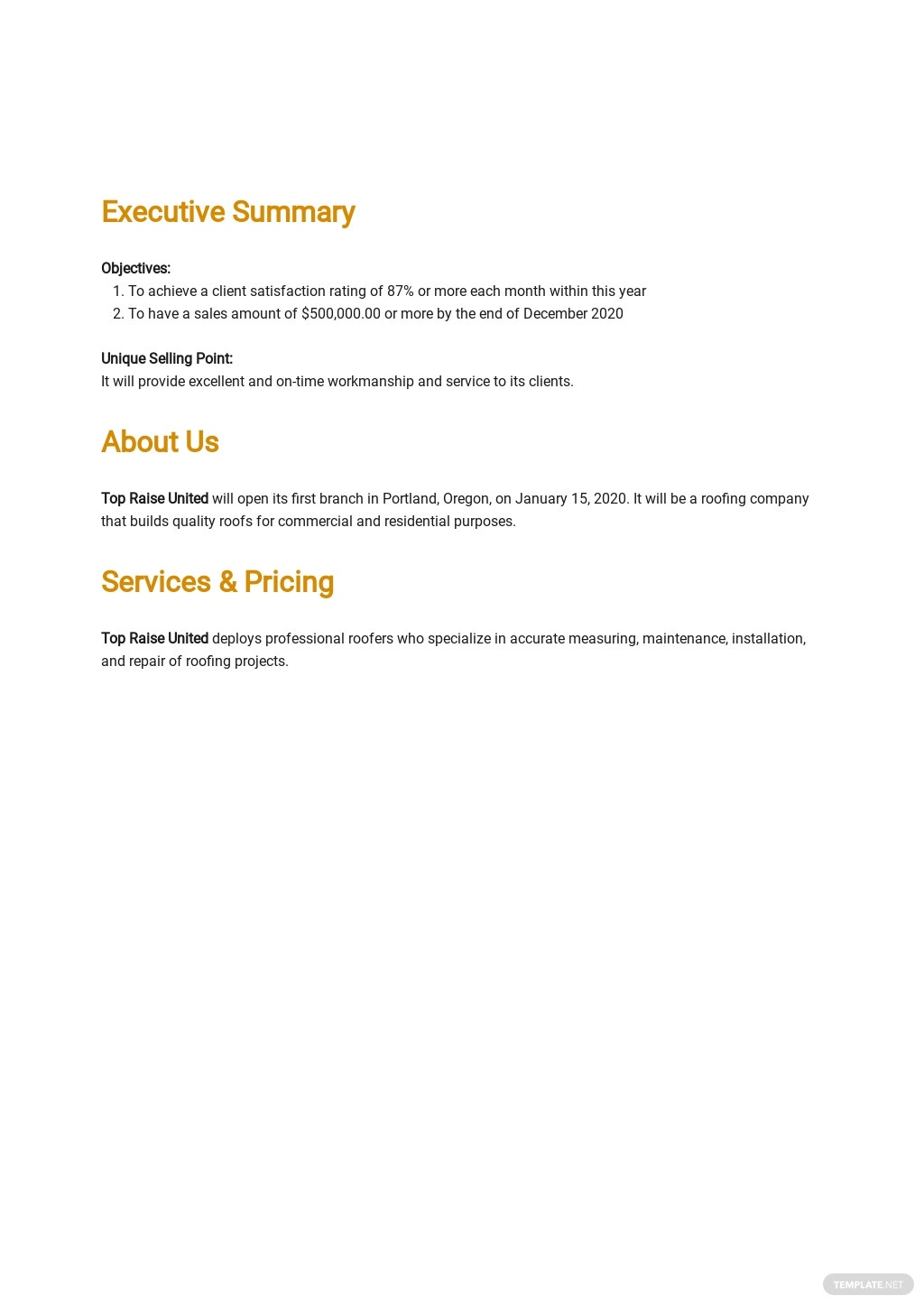 Roofing Company Business Plan Template 1.jpe