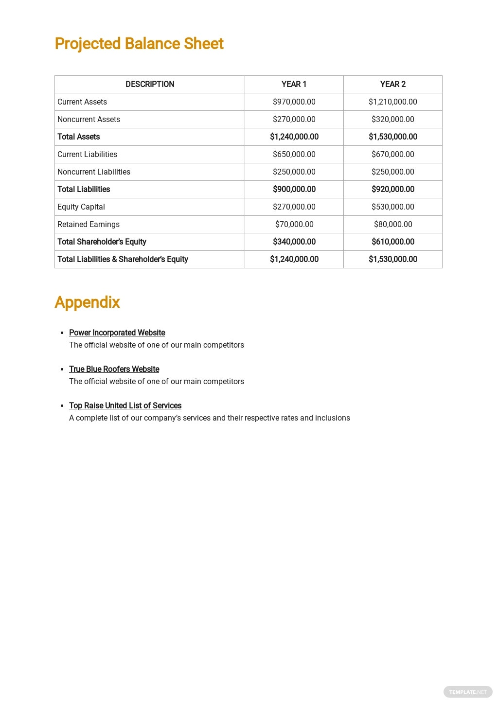 Roofing Company Business Plan Template 6.jpe